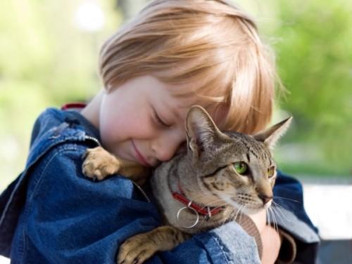 Влияние животных в воспитании детей (2)