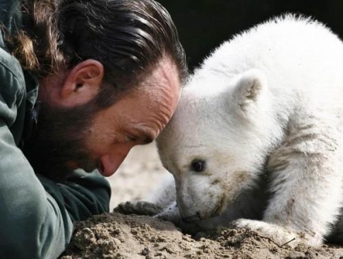 Как правильно посещать зоопарки?1