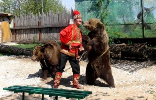 дрессировка медведя 1